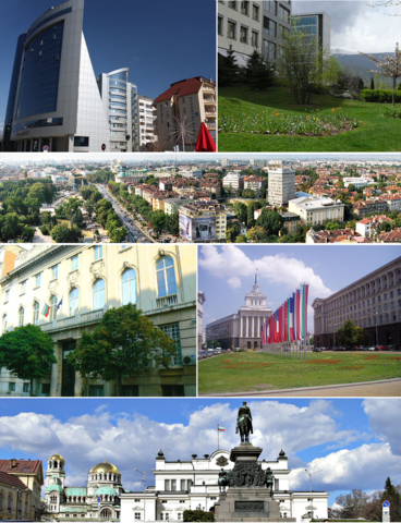 collage compiled by Wikipedia Commons from multiple sources