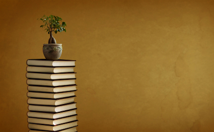 potted small tree on top of a stack of books